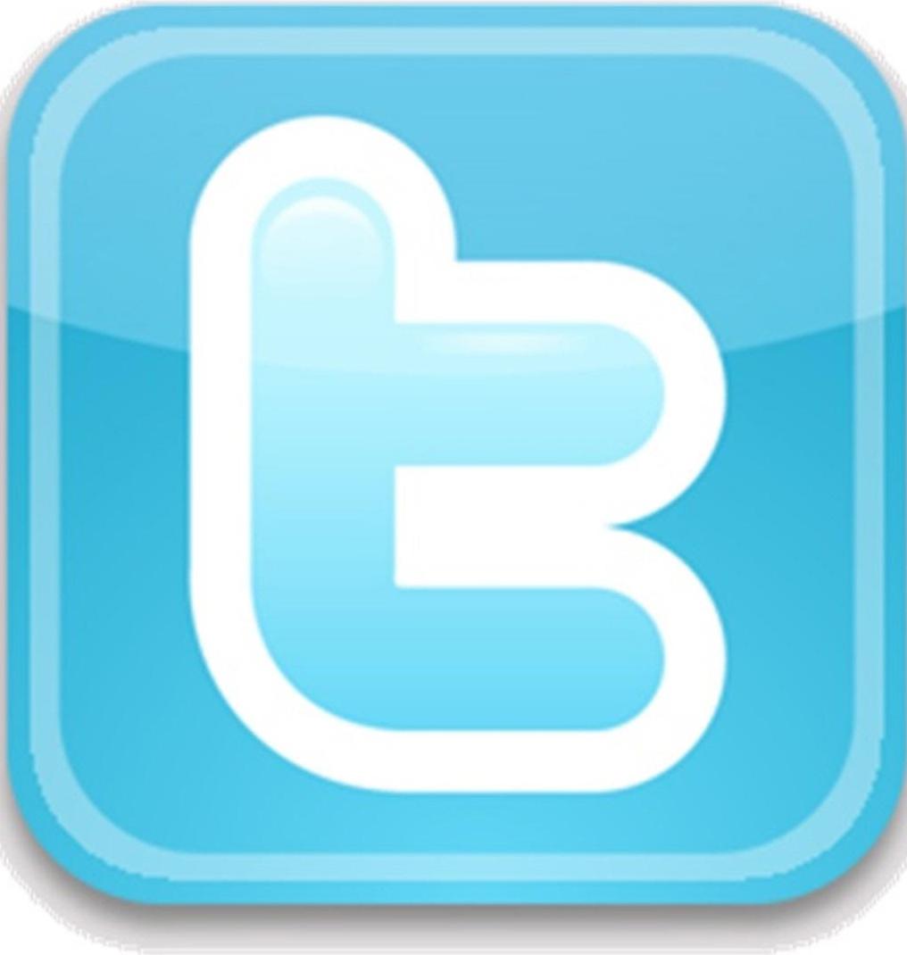 twitter-logo-crop